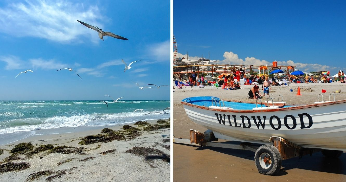 You Can Bring Fido On Your Next Vacation To These Dog-Friendly Beaches