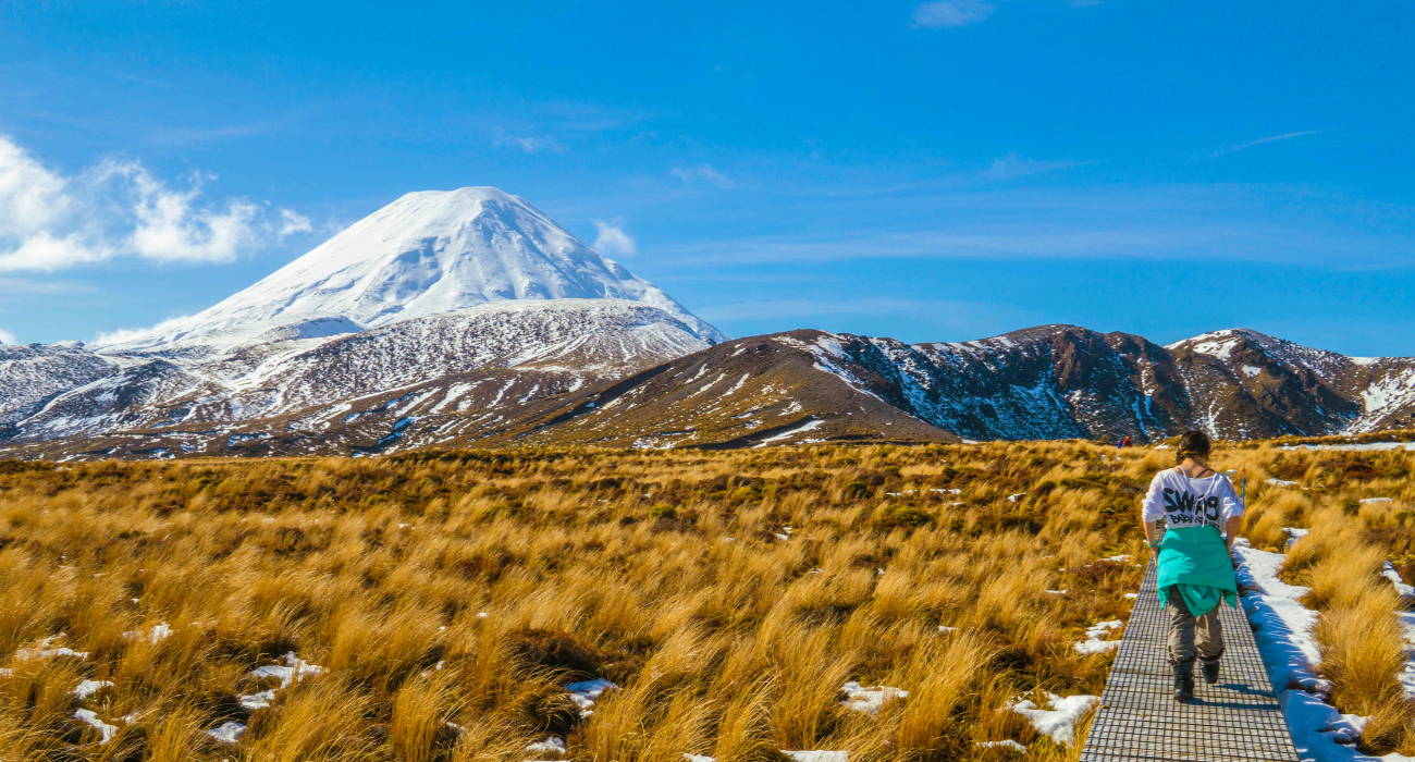 New Zealand Holiday Guide, The North Island: How To Plan The Perfect Vacation