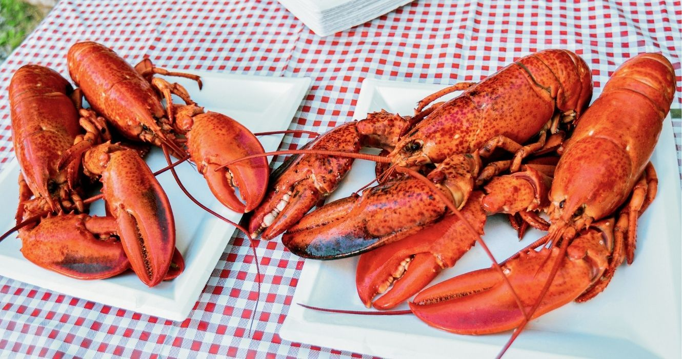 The Acadian Cuisine Of New Brunswick Is Perfectly Rooted In French Tradition
